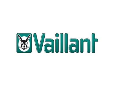 Image couleur du partenaire de construction Vaillant